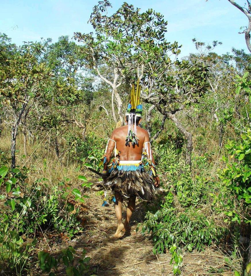20 de Janeiro Dia Nacional da Consciência Indígena- A Confederação dos  Tamoios. | Mamapress